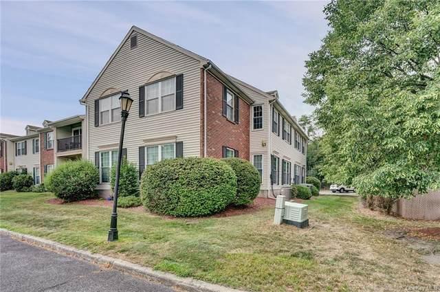 31 Moore Lane #21, Washingtonville, NY 10992 (MLS #H6059220) :: Mark Seiden Real Estate Team