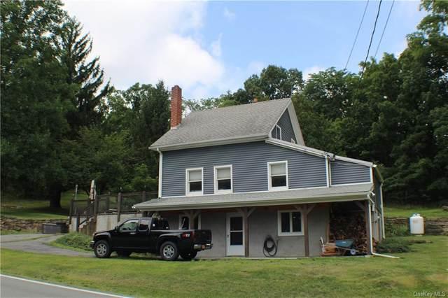 2242 Mt Hope Road, Middletown, NY 10940 (MLS #H6059634) :: William Raveis Baer & McIntosh