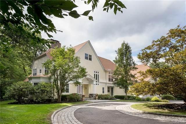 6 Rock Shelter Road, Waccabuc, NY 10597 (MLS #H6059749) :: Mark Boyland Real Estate Team