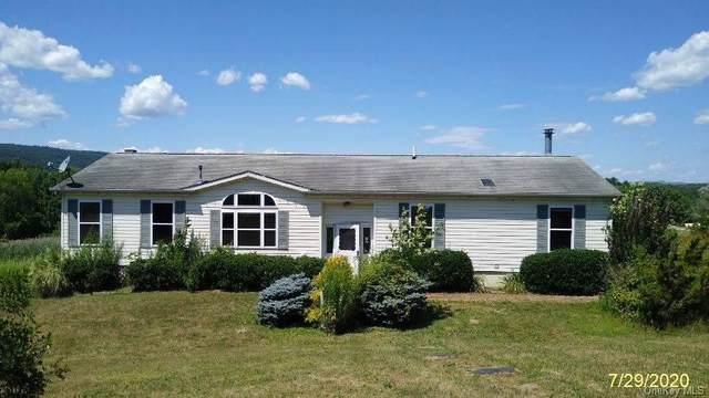 7 Yellow City Road, Amenia, NY 12501 (MLS #H6059771) :: Kendall Group Real Estate | Keller Williams