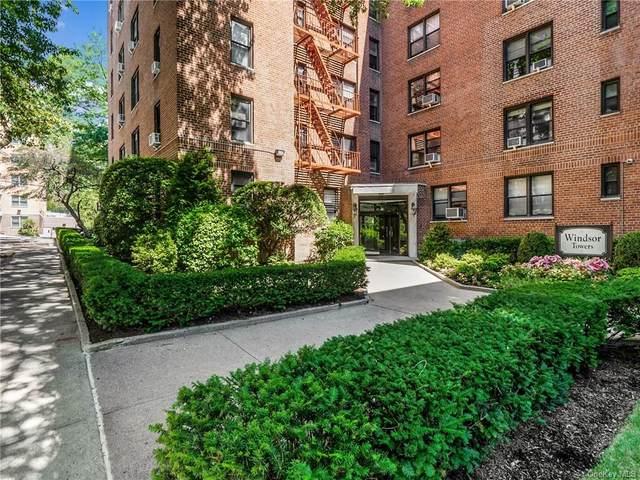 2 Windsor Terrace 2G, White Plains, NY 10601 (MLS #H6059880) :: Marciano Team at Keller Williams NY Realty