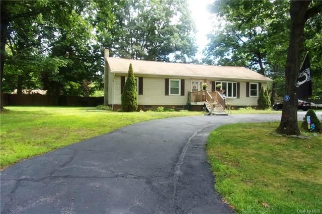 39 Delaware Drive, Sparrowbush, NY 12780 (MLS #H6059936) :: Frank Schiavone with William Raveis Real Estate