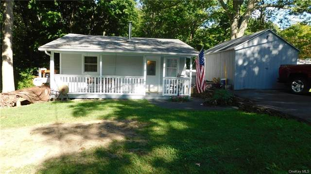 410 Nelson Road, Monroe, NY 10950 (MLS #H6060073) :: William Raveis Baer & McIntosh