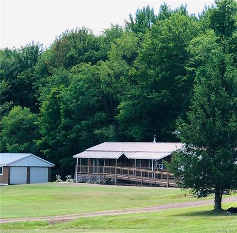 1616 Jim Lane Road, Bovina Center, NY 13740 (MLS #H6060223) :: Signature Premier Properties
