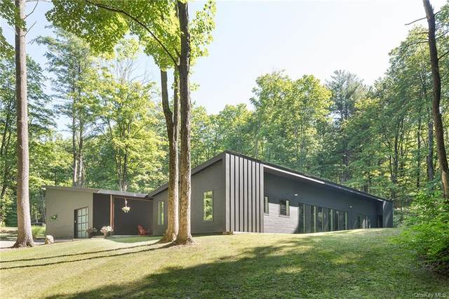 127 Hilltop Road, Rhinebeck, NY 12572 (MLS #H6060376) :: Frank Schiavone with William Raveis Real Estate
