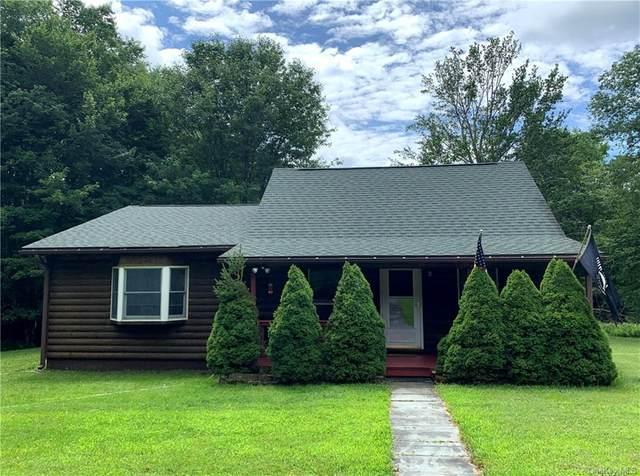 81 Macdougal Road, Roscoe, NY 12776 (MLS #H6060440) :: Kendall Group Real Estate | Keller Williams