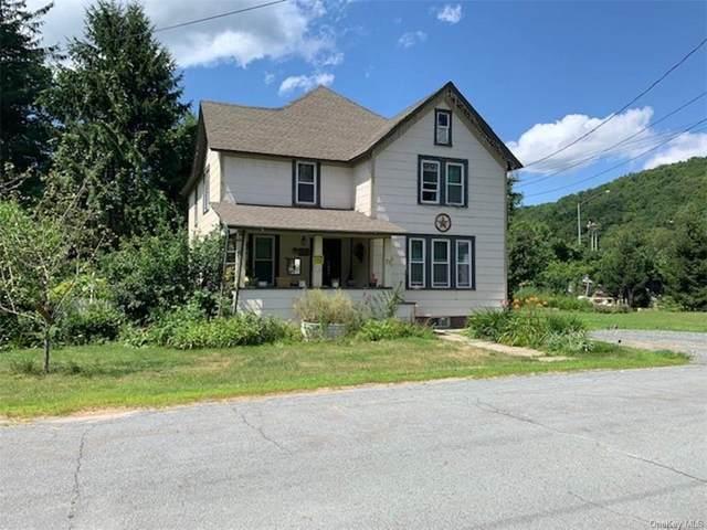 71 Cottage Street, Roscoe, NY 12776 (MLS #H6060469) :: Mark Boyland Real Estate Team