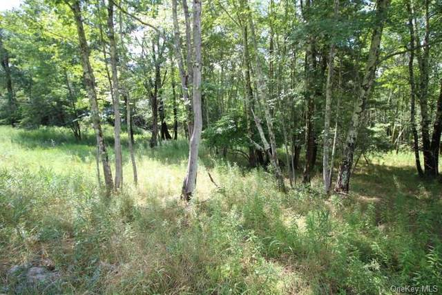 Maplewood Gardens Road, Monticello, NY 12701 (MLS #H6060479) :: Frank Schiavone with William Raveis Real Estate