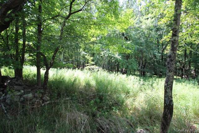 Maplewood Garden Road, Monticello, NY 12701 (MLS #H6060491) :: Marciano Team at Keller Williams NY Realty