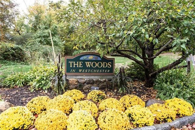 41 Brooke View Drive 4-1, Ossining, NY 10562 (MLS #H6060500) :: Mark Boyland Real Estate Team