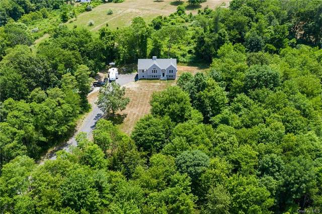 678 Plass Road, Pleasant Valley, NY 12569 (MLS #H6060606) :: William Raveis Legends Realty Group