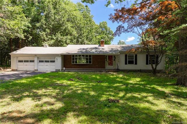 43 Reservoir Road, Staatsburg, NY 12580 (MLS #H6060634) :: Frank Schiavone with William Raveis Real Estate