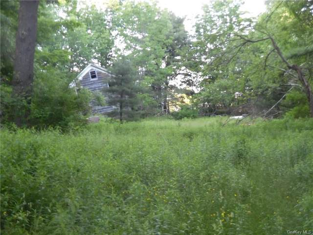 74 Hillside Avenue, Monticello, NY 12701 (MLS #H6060662) :: Frank Schiavone with William Raveis Real Estate