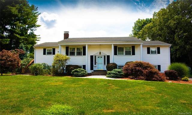 17 Colony Drive, Blauvelt, NY 10913 (MLS #H6060776) :: William Raveis Baer & McIntosh