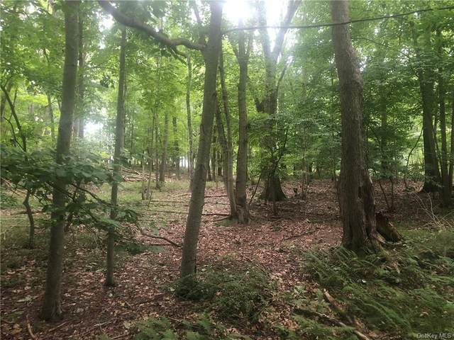 Park View Rd - Lot 7, Pound Ridge, NY 10576 (MLS #H6060858) :: Mark Boyland Real Estate Team