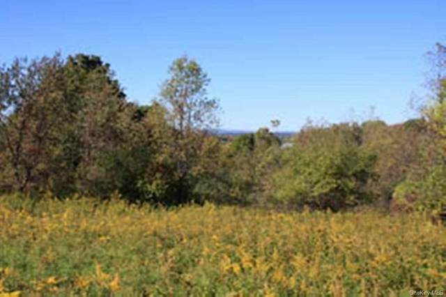 Route 82, Lagrangeville, NY 12540 (MLS #H6060871) :: William Raveis Legends Realty Group
