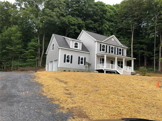 lot 3 Peale Place, Montgomery, NY 12549 (MLS #H6060873) :: Kendall Group Real Estate   Keller Williams