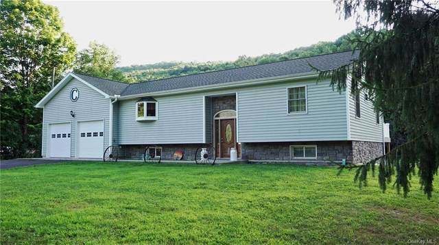 409 County Highway 20, Other, NY 13754 (MLS #H6061058) :: Nicole Burke, MBA | Charles Rutenberg Realty