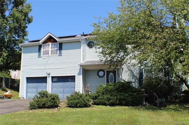 52 Revere Circle, Washingtonville, NY 10992 (MLS #H6061060) :: Cronin & Company Real Estate