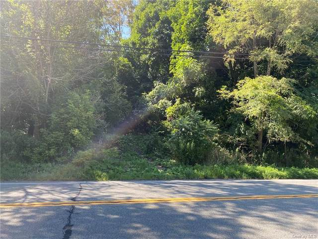 Route 9D, Wappingers Falls, NY 12590 (MLS #H6061081) :: The Home Team