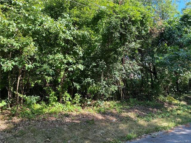 11 Hamilton Drive, Hopewell Junction, NY 12533 (MLS #H6061085) :: The Home Team