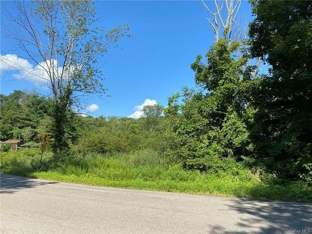 447 Stormville Mountain Road, Stormville, NY 12582 (MLS #H6061086) :: Mark Seiden Real Estate Team