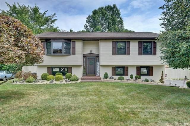 8 Somerset Drive, Washingtonville, NY 10992 (MLS #H6061108) :: William Raveis Baer & McIntosh