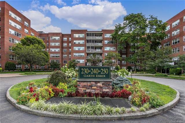 230 Garth Road 6G1, Scarsdale, NY 10583 (MLS #H6061219) :: Frank Schiavone with William Raveis Real Estate