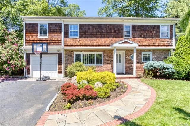 428 Stratton Road, New Rochelle, NY 10804 (MLS #H6061325) :: William Raveis Baer & McIntosh