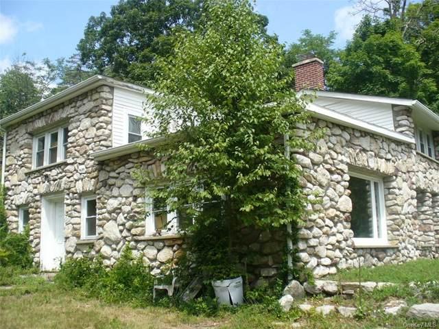89 Mandell Road, Pine Bush, NY 12566 (MLS #H6061538) :: Cronin & Company Real Estate