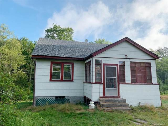 4 Camp Kenny Brook Road, Monticello, NY 12701 (MLS #H6061914) :: Cronin & Company Real Estate