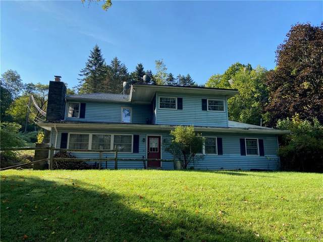 541 Jeffersonville N Branch Road, North Branch, NY 12766 (MLS #H6062012) :: Nicole Burke, MBA | Charles Rutenberg Realty
