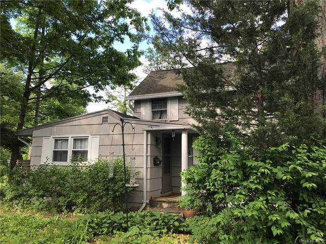 52 Camp Ground, Ossining, NY 10562 (MLS #H6062096) :: William Raveis Baer & McIntosh