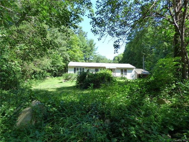 11 Hillcrest Lane, Wingdale, NY 12594 (MLS #H6062135) :: Frank Schiavone with William Raveis Real Estate