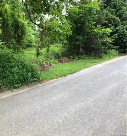 13 Marion Avenue, Napanoch, NY 12458 (MLS #H6062141) :: William Raveis Baer & McIntosh