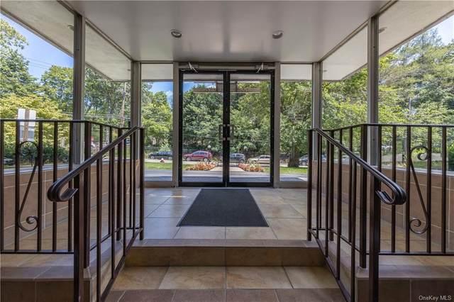 5 Oakdale Manor B15, Suffern, NY 10901 (MLS #H6062387) :: Nicole Burke, MBA   Charles Rutenberg Realty