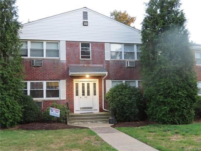 221 N Middletown Road D, Pearl River, NY 10965 (MLS #H6062439) :: Mark Seiden Real Estate Team