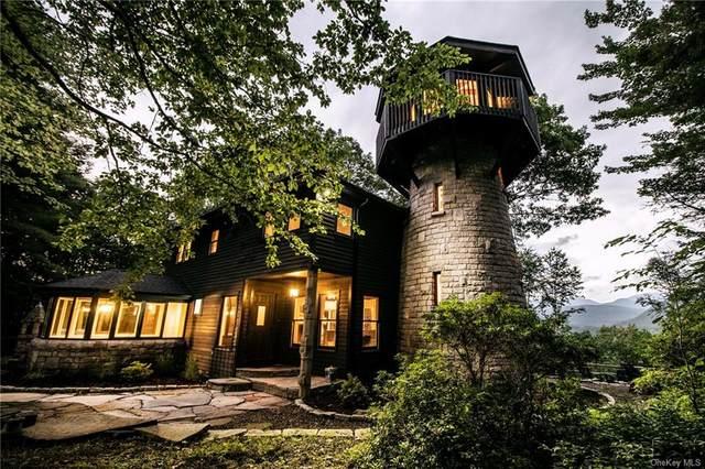 85 Upper West Ohayo Mountain Road, Bearsville, NY 12409 (MLS #H6062642) :: William Raveis Baer & McIntosh