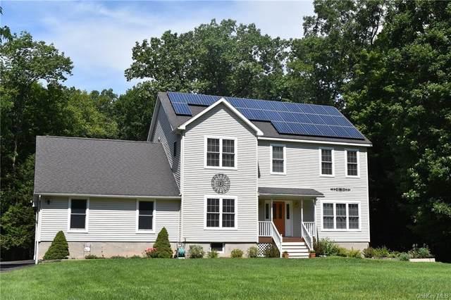 94 Manor Road, Red Hook, NY 12571 (MLS #H6062807) :: Kendall Group Real Estate | Keller Williams