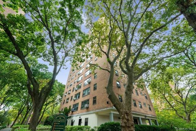21-50 33rd Road 11A, Astoria, NY 11106 (MLS #H6062996) :: Frank Schiavone with William Raveis Real Estate