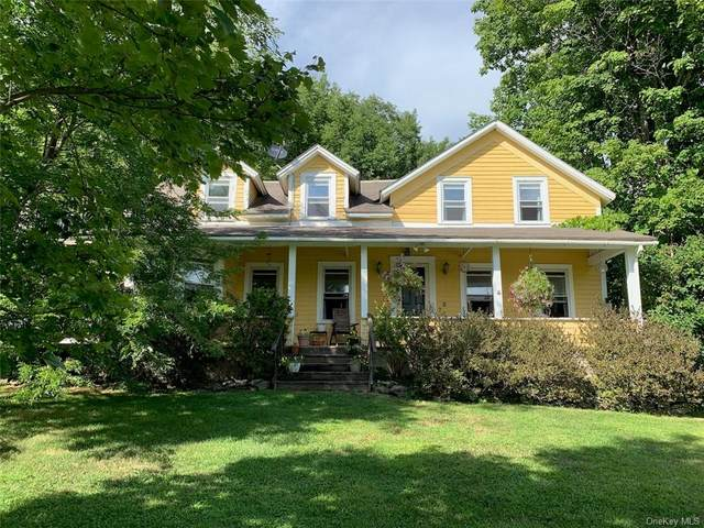 292 Buck Brook Road, Roscoe, NY 12776 (MLS #H6063405) :: Frank Schiavone with William Raveis Real Estate