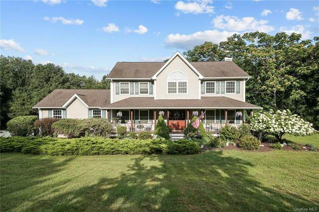 141 Dawn Drive, Westtown, NY 10998 (MLS #H6063804) :: The McGovern Caplicki Team