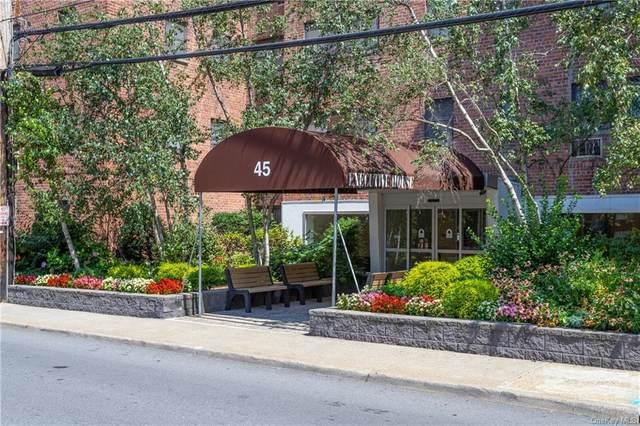 45 E Hartsdale Avenue 3D, Hartsdale, NY 10530 (MLS #H6064098) :: Nicole Burke, MBA | Charles Rutenberg Realty