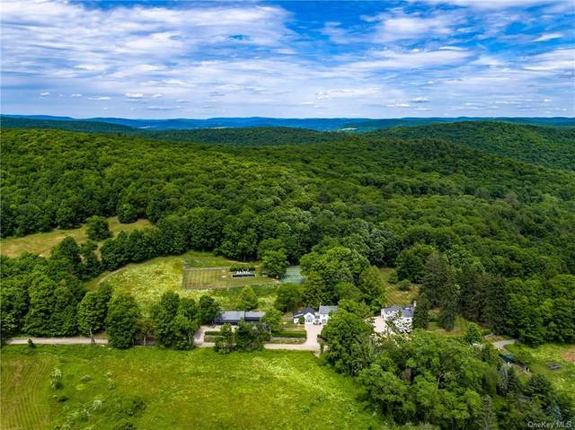 474-482 Deep Hollow Road, Millbrook, NY 12545 (MLS #H6064335) :: Kendall Group Real Estate | Keller Williams