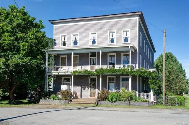 391 Main Street, East Branch, NY 13756 (MLS #H6064406) :: Kendall Group Real Estate | Keller Williams