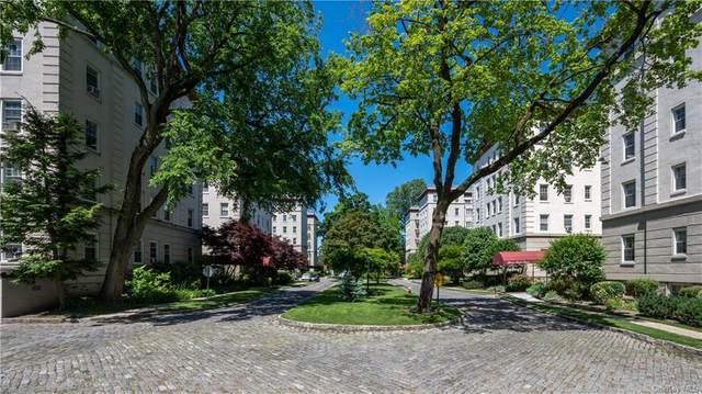 4 Park Lane 5A, Mount Vernon, NY 10552 (MLS #H6064558) :: Mark Seiden Real Estate Team