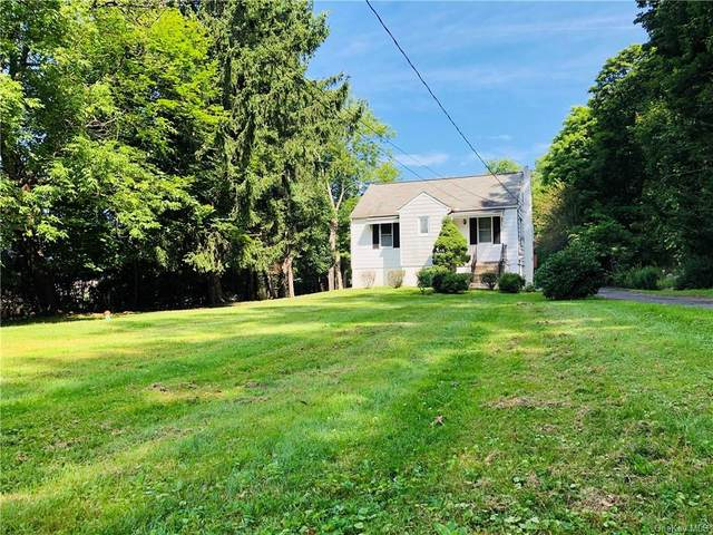 166 Blauvelt Road, Blauvelt, NY 10913 (MLS #H6064716) :: William Raveis Baer & McIntosh