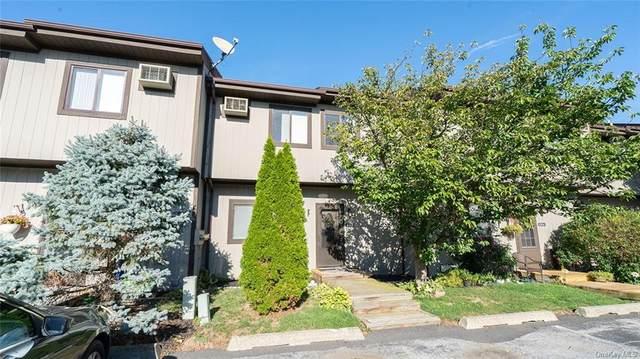 8303 Chelsea Cove N, Hopewell Junction, NY 12533 (MLS #H6064762) :: William Raveis Baer & McIntosh