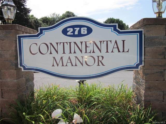 276 Temple Hill Road #1114, New Windsor, NY 12553 (MLS #H6065036) :: McAteer & Will Estates | Keller Williams Real Estate