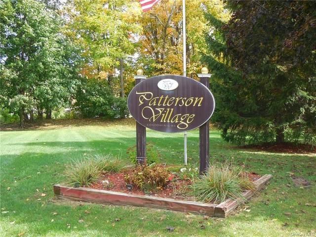 33 Patterson Village Court, Patterson, NY 12563 (MLS #H6065565) :: Cronin & Company Real Estate